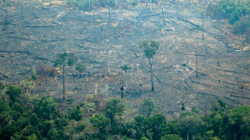 DIRECT. Les pays du G7 promettent une aide d'urgence de 20 millions d'euros pour lutter contre les incendies en l'Amazonie