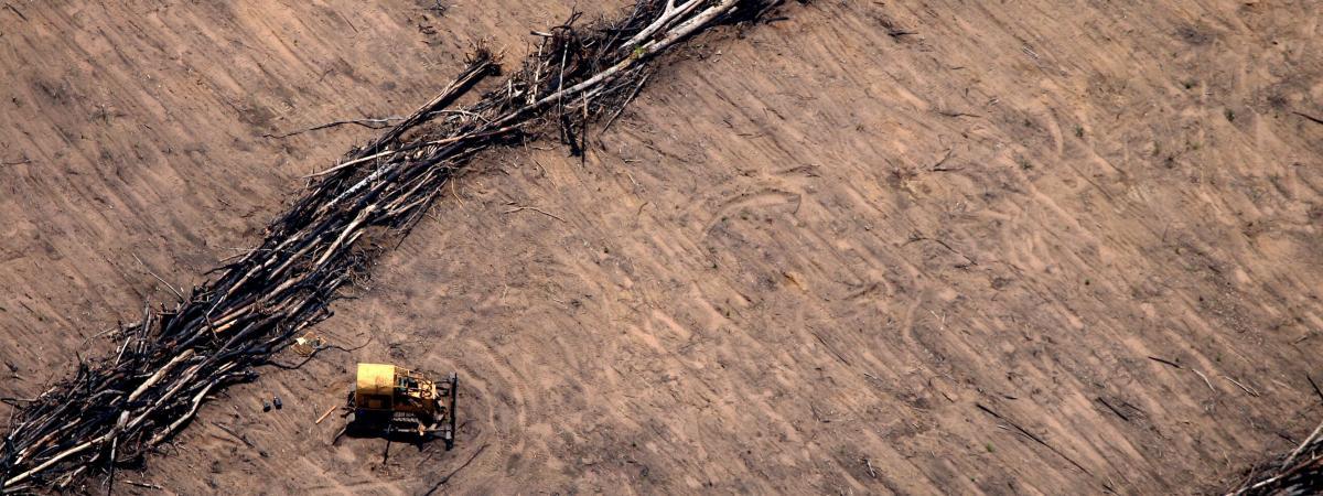 Un tracteur sur un champ de soja, dans l\'Etat du Mato Grosso, dans le centre du Brésil, le 8 décembre 2008.