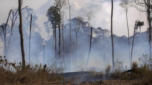 """Les incendies en Amazonie progressent, le ministre brésilien de la Défense assure qu'ils sont """"sous contrôle"""""""