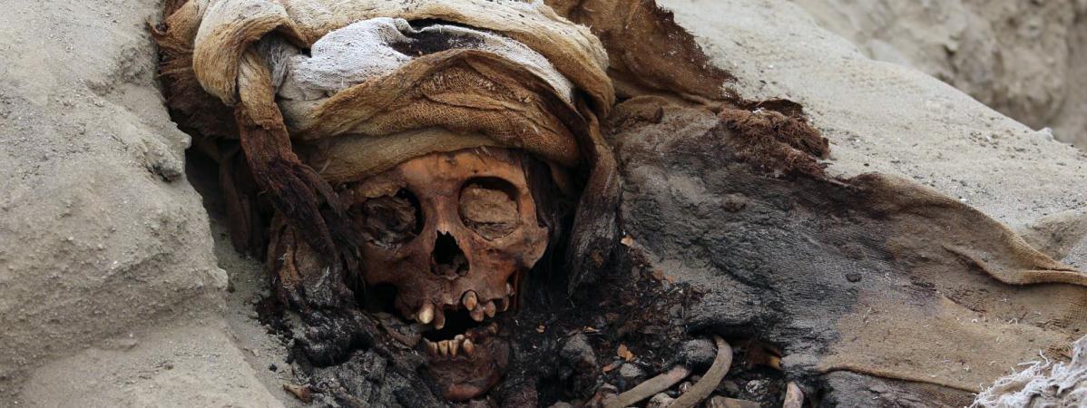 Un crâne d\'un enfant sacrifié retrouvé sur un site de Pampa la Cruz (Colombie), le 27 août 2019.