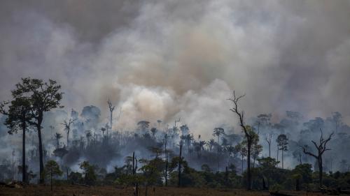 """Incendies en Amazonie : les Etats-Unis refusent de participer à l'initiative du G7 """"qui s'est faite sans consultation avec le président Bolsonaro"""""""