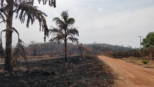 """""""Personne n'est venu nous voir, aucune autorité"""" : on a parcouru la route des zones dévastées par les incendies en Amazonie"""