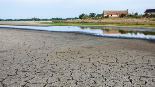 """""""Le changement climatique, ce n'est plus de la flûte"""" : en Creuse, la sécheresse fait des ravages et tourmente les agriculteurs"""
