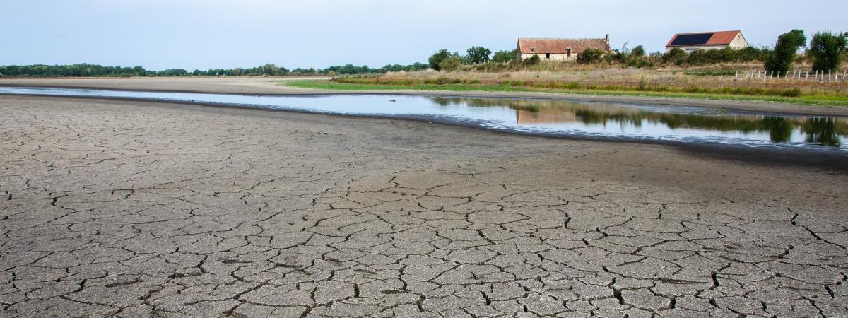 L\'étang des Landes, le 27 août 2019 à Lussat (Creuse).