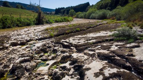 VIDEO. Sécheresse : la solidarité des agriculteurs face à la pénurie de nourriture pour les bêtes