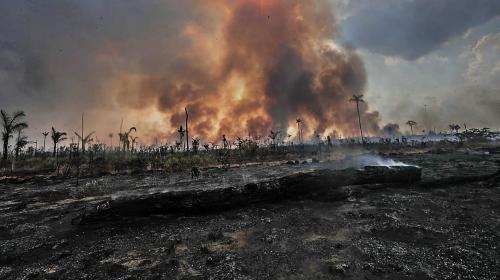 Brésil : Jair Bolsonaro interdit les brûlis pour tenter de freiner les incendies en Amazonie
