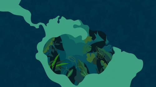 VIDEO. Brésil : six chiffres pour comprendre la déforestation en Amazonie