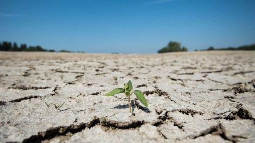 Sécheresse : la région Limousin a enregistré un déficit de pluie de 30%