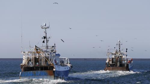 Un Brexit sans accord laisserait-il vraiment la moitié des pêcheurs français à quai ?