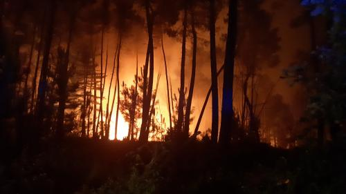 Risques d'incendies : le plan Alarme activé pour le sud de l'Ardèche et de la Drôme   https://www.francetvinfo.fr/faits-divers/incendie/risques-d-incendies-le-plan-alarme-active-pour-le-sud-de-l-ardeche-et-de-la-drome_3603371.html…pic.twitter