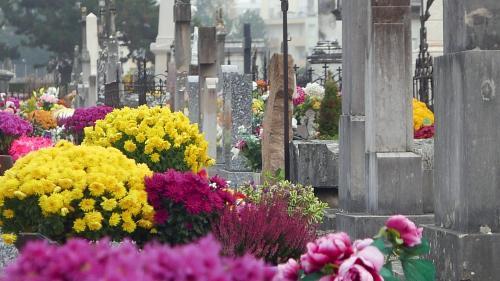 """Assurances obsèques : """"60 millions de consommateurs"""" dénonce des """"placements ruineux"""""""