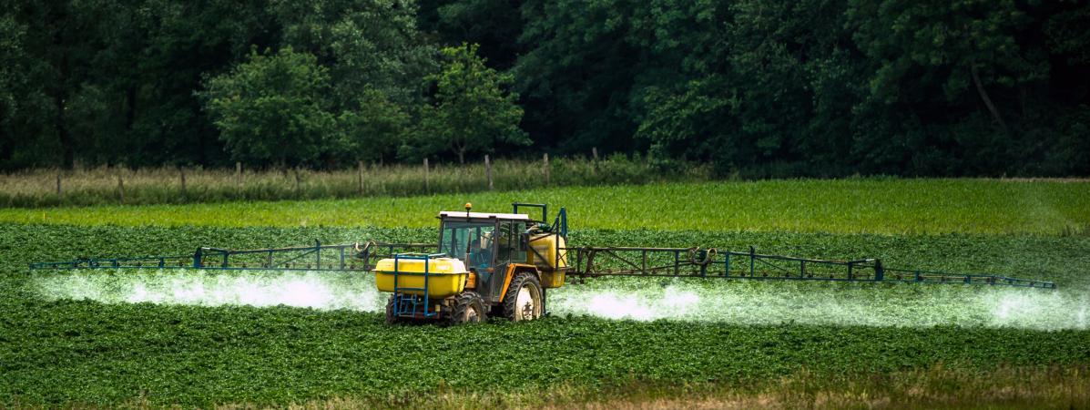 Le billet vert. Cinq grandes villes interdisent l'utilisation des pesticides sur leurs territoires