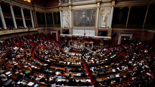 """DIRECT. La loi de bioéthique est """"une chance, et même un privilège pour notre société"""", déclare Agnès Buzyn en ouverture des débats à l'Assemblée nationale"""