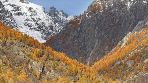 """""""J'étais persuadé que j'allais le retrouver"""" : un corps découvert sur un glacier des Alpes, 43 ans après la disparition d'un alpiniste"""