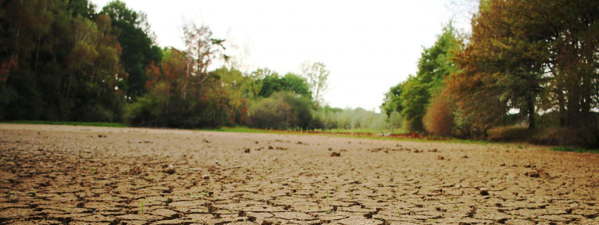 """Sécheresse : """"La situation est grave"""", selon l'hydrologue Emma Haziza, elle a dépassé le stade du """"scénario..."""