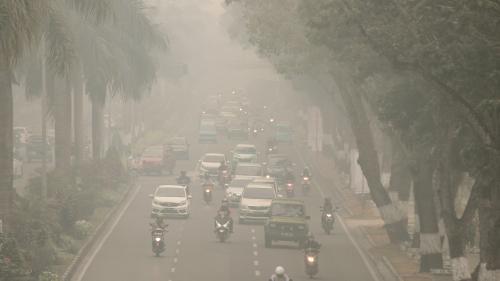Pollution de l'air : des particules de carbone ont été retrouvées dans des placentas de femmes après leur accouchement