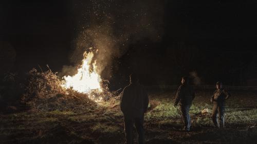 """Des dizaines d'agriculteurs allument des """"feux de la colère"""" pour dénoncer le malaise dans la profession"""