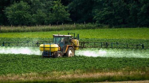 DOCUMENT FRANCE 3. En Mayenne, une mère de famille atteinte de deux tumeurs dénonce l'utilisation de pesticides à huit mètres de son domicile