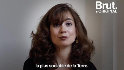 VIDEO. Elle raconte comment l'Alzheimer a bouleversé sa vie de famille