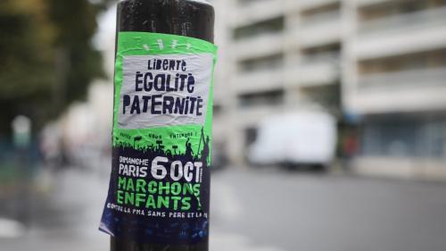 """""""On ne peut pas tout se permettre avec l'Homme"""" : les anti-PMA dans les rues de Paris"""