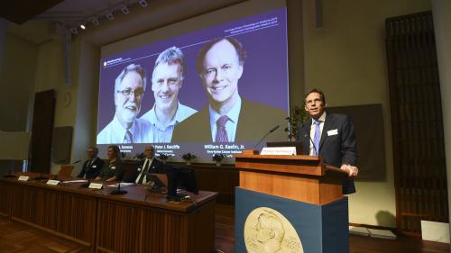 Nobel de médecine : deux Américains et un Britannique récompensés pour leurs découvertes sur l'oxygénation des cellules