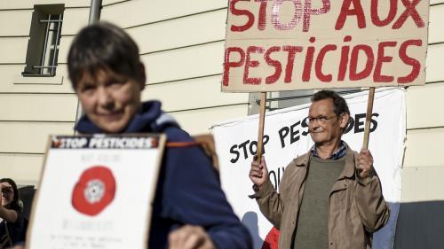 APPEL A TEMOIGNAGES. Votre mairie a pris un arrêté anti-pesticides ? Racontez-nous