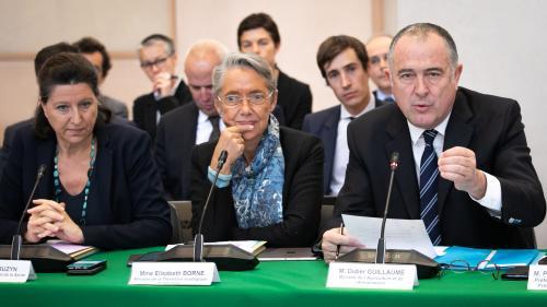 """DIRECT. Incendie de l'usine Lubrizol à Rouen : """"Pour le lait, tous les prélèvements étaient négatifs"""", assure le ministre de l'Agriculture"""