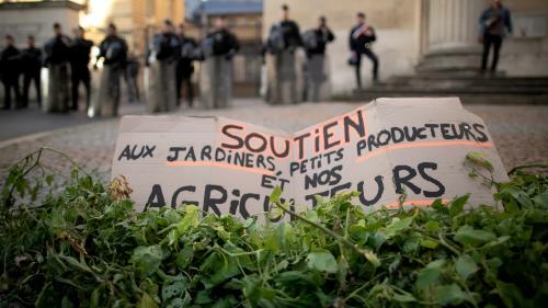Incendie à Rouen : Lubrizol va verser au moins 50 millions d'euros aux agriculteurs victimes des retombées polluantes