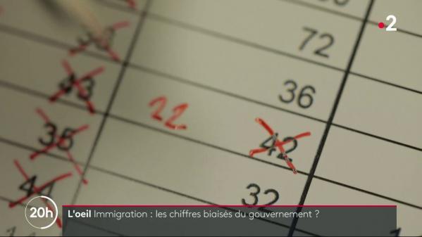 VIDEO. Immigration : les chiffres biaisés du gouvernement ?