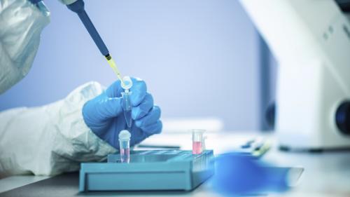 Le projet de loi de bioéthique voté par les députés permet-il de créer des embryons chimériques mi-homme mi-animal ?
