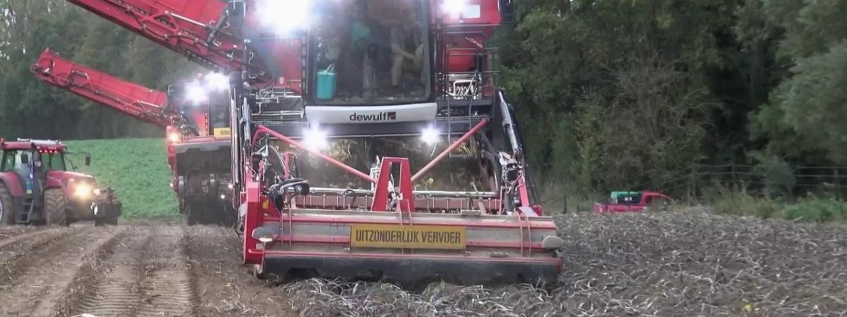 VIDEO. La sous-location de terres dans le Nord, business juteux des agriculteurs