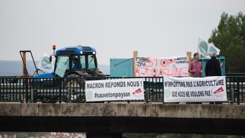 """""""Ce n'est pas l''agribashing' qui pousse au suicide !"""": des agriculteurs regrettent la mobilisation lancée par la FNSEA"""