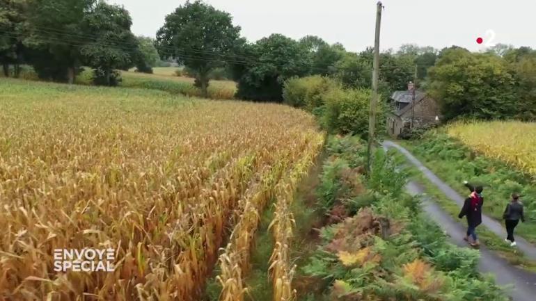 sites de rencontre de l'agriculture libre au Royaume-Uni