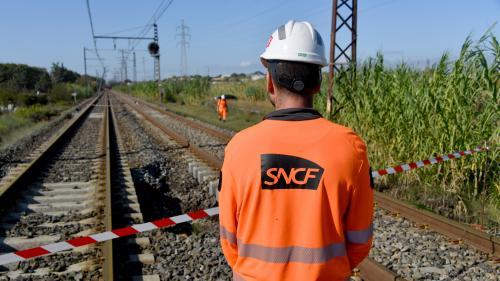 Trafic limité entre Paris et l'Ouest, liaison interrompue dans le Sud... Les perturbations à prévoir sur le réseau SNCF en fin de semaine