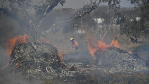 Des pompiers luttent contre un incendiele 21 août 2019, près de Brasilia, dans le Cerrado brésilien, un paysage de savane où se développe la culture du soja.