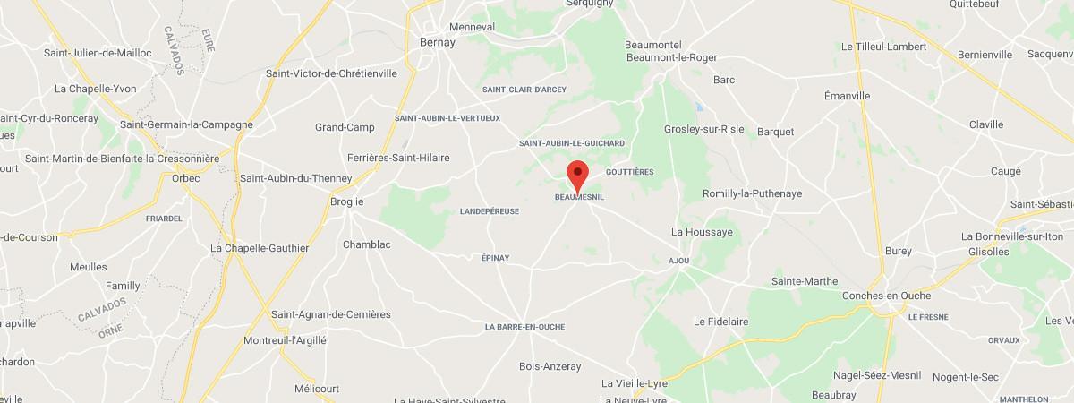 En Normandie, une ânesse a bénéficié d'une opération de reconstruction faciale