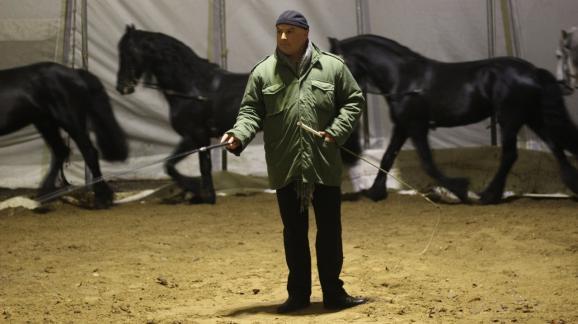 La cavalleria di Gruss è una tradizione.  Di solito è gestito da un membro della famiglia.
