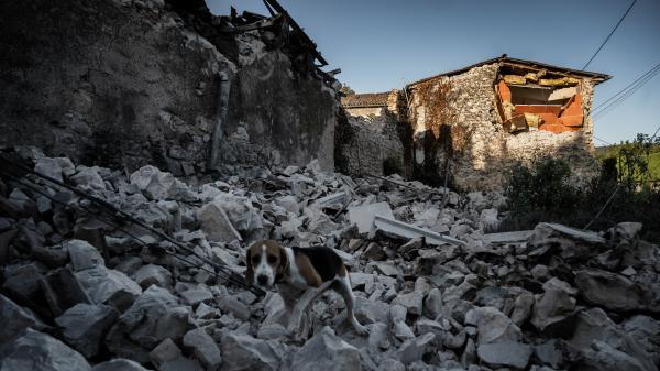 Ardèche : une vague de solidarité après le séisme au Teil