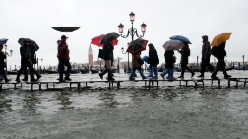 """EN IMAGES. Un nageur place Saint-Marc, des gondoles échouées... Venise sous les eaux après une """"acqua alta"""" historique"""