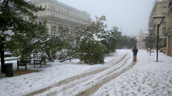 190 000 foyers sont toujours privés d'électricité dans la vallée du Rhône après les importantes chutes de neige