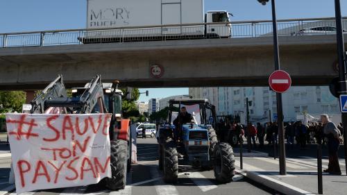 """""""Ras-le-bol"""" des agriculteurs: 1000 tracteurs vont converger vers Paris mercredi, annonce la FNSEA"""