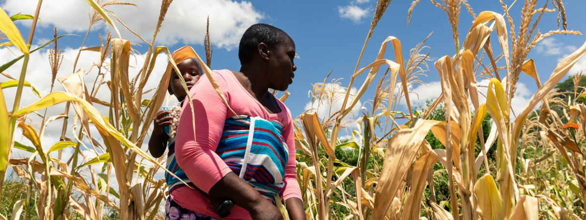 Une femme et son enfant dans un champ de maïs dans la zone rurale de Mutoko touché par la sécheresse en mars 2019