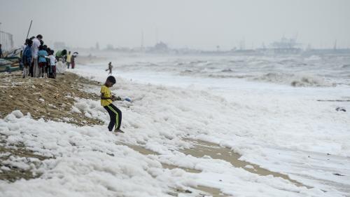 Une célèbre plage indienne envahie de monceaux de mousse polluante   https://www.francetvinfo.fr/monde/inde/une-celebre-plage-indienne-envahie-de-monceaux-de-mousse-polluante_3727807.html…pic.twitter.com/7x0VNF79J6