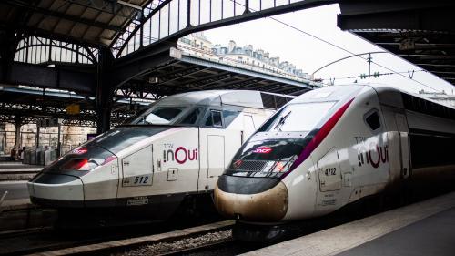 Grève contre la réforme des retraites : la SNCF annule 90% des TGV et 70% des TER pour demain