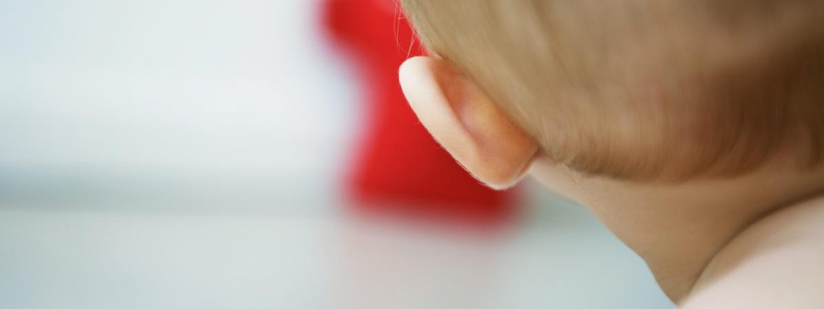 Des fossiles datés de 125 millions d'années révèlent comment nos oreilles sont nées