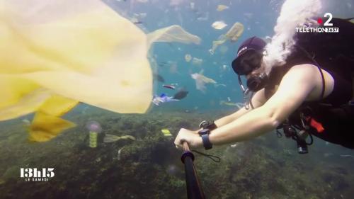"""VIDEO. """"Dans l'assiette du poisson en Méditerranée, il y a moitié de plastique et moitié de zooplancton"""", selon un biologiste"""