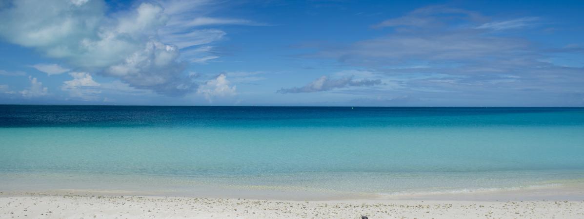 """""""La circulation de l'eau n'a pas lieu de la même façon"""" : les océans manquent d'oxygène à cause du réchauff..."""