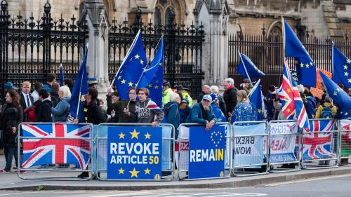 VIDEO. Royaume-Uni : à cause du Brexit, ces Britanniques voteront contre leur camp aux élections législatives anticipées