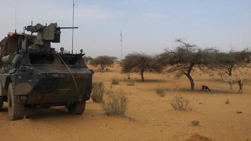 """Emmanuel Macron annonce que 33 """"terroristes"""" ont """"été neutralisés"""" au Mali"""