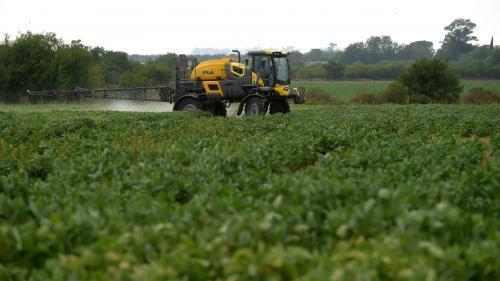Maladie de Parkinson : à cause des pesticides, les agriculteurs sont plus exposés